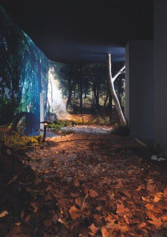 Faszination Garten archithese faszination garten